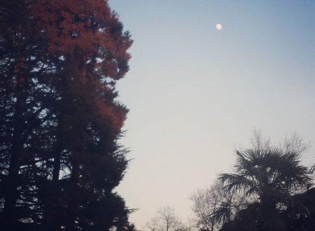 Il Calendario Lunare Cinese
