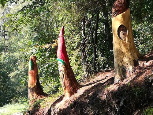 Foreste giornata internazionale 21 marzo