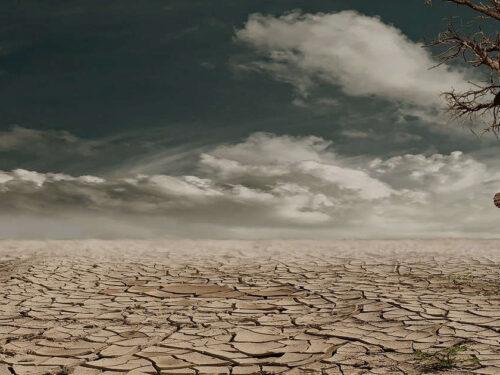 Giornata Mondiale contro  Desertificazione